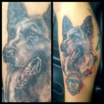 police dog, tattoo, german shepherd, malinois, police, portrait, dog portrait, dog