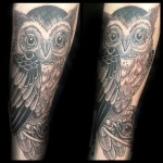 Tattoo Ideas, Traditional Tattoos, Owl Tattoo, Tattoo Inspiration, Google Search, owl Tattoos, Traditional owl Tattoo, owl Tattoo